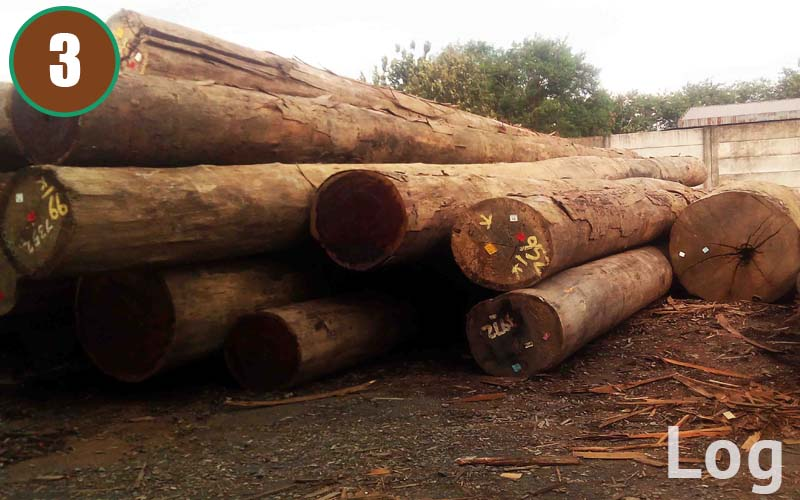 Log are delivered and stored with care in our factory